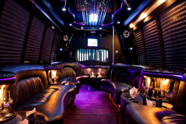 18 people party bus rental Cary